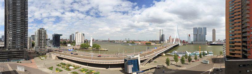 Heel Rotterdam op één foto van Roy Poots