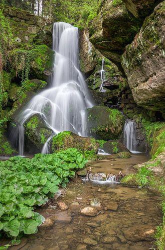 Waterfall in Saxon Switzerland van Michael Valjak