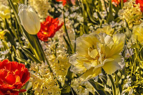 Fleurig bloemenveld
