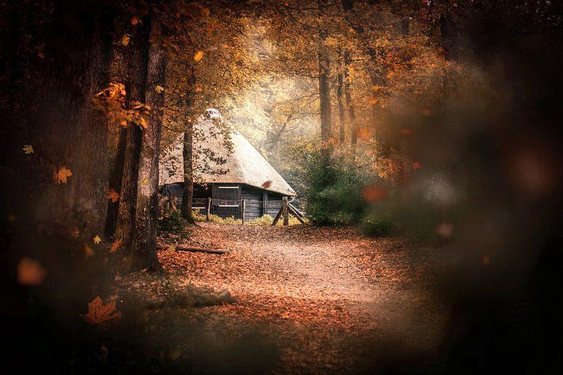 Through the Leaves van Wesley Heyne