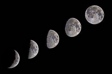 Zunehmender Mond von