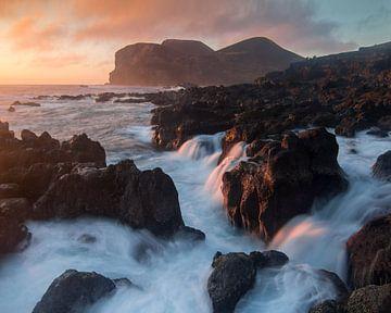 Wilde Küstenlinie von Gunther Cleemput
