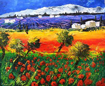 Rote Mohnblumen und Lavendel