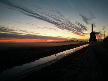 sunset mill van