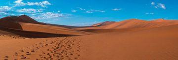Voetstappen in het rode zand van de Sossusvlei, Namibië van Rietje Bulthuis