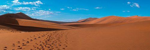 Voetstappen in het rode zand van de Sossusvlei, Namibië
