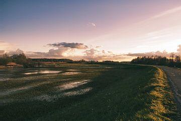 Landschap omgeving Zwolle van S van Wezep