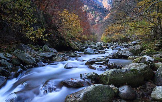 Autumn flow van Sander van der Werf