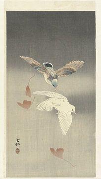 Twee duiven bij vallende ginkgo bladeren, Ohara Koson