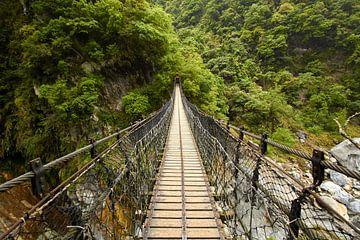 Brug in Taroko Gorge Nationaal Park van Jolene van den Berg