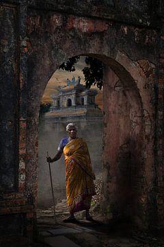 Indiase in Vietnam van Cees van Miert