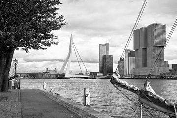 Zicht op de Wilhelminapier, Rotterdam (zwart-wit) van Rick van der Poorten