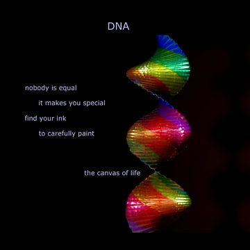 DNA van L.P.L. Mazzacani