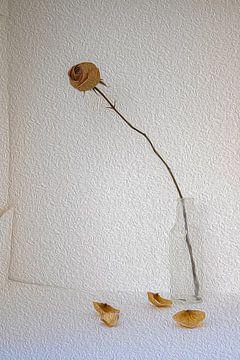 Stilleven met bruine roos in glazen flesje van Susan Hol