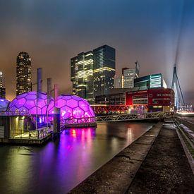 The pavilion van Bram Visser