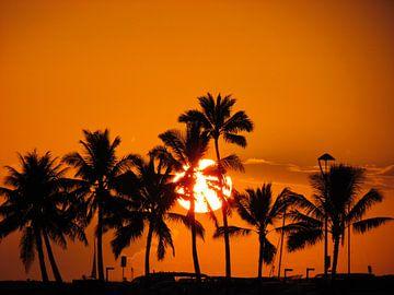 Waikiki Sunset van Sandra Frevel