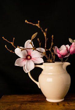 Nederlandse  Magnolia van simone swart