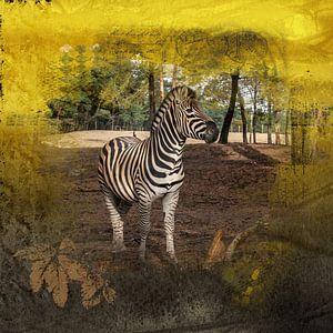 Zebra van Carla van Zomeren