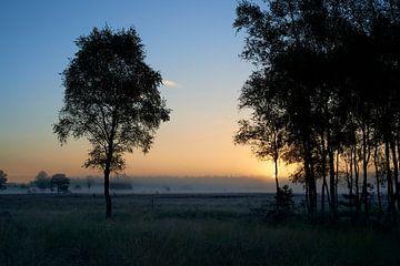 Sonnenaufgang auf der Noorderheide von Jenco van Zalk