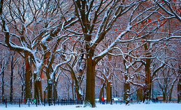 New York's Central Park na een flinke sneeuwbui von Koen Hoekemeijer