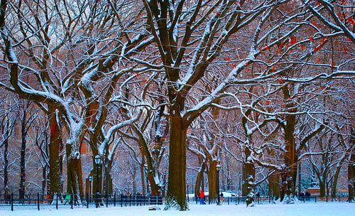 New York's Central Park na een flinke sneeuwbui van