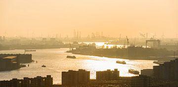 Nieuwe Maas bij Rotterdam in het avondlicht van