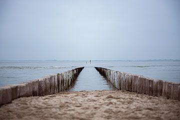 Ingang tot de zee van Bjorn Cornelissen
