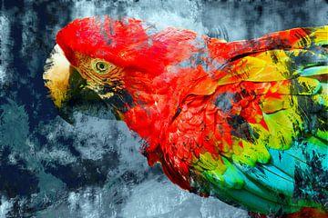 Abstracte papegaai van Nannie van der Wal