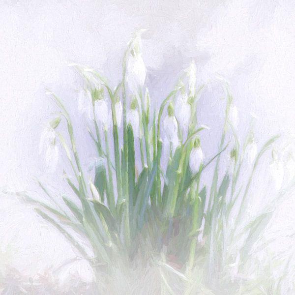 snowdrops van Yvonne Blokland