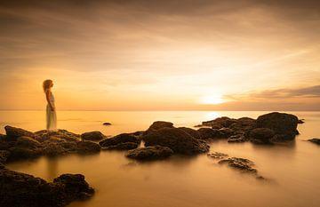 Sonnenuntergang am Meer von Cees de Jonge