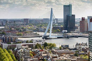 De Erasmusbrug Rotterdam sur