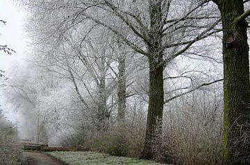 Winterse wandeling van Pamela Fritschij