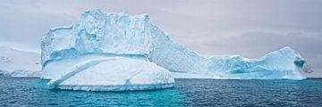 de ijsschots in panorama van Eric de Haan