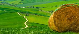 Tuscany! or not?