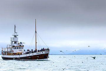 Bateau à bosse et bateau touristique