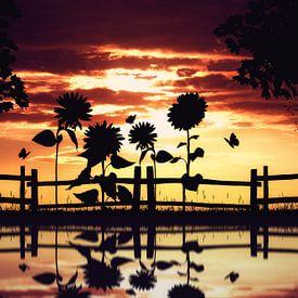 Warme silhouet van de natuur van Bert Hooijer