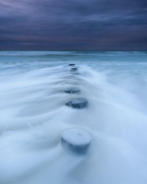 Winter Days von Ellen van den Doel