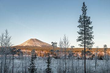 De eenzame Berg van Marco Lodder