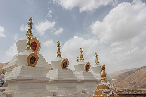 Stoepa's in Tibet