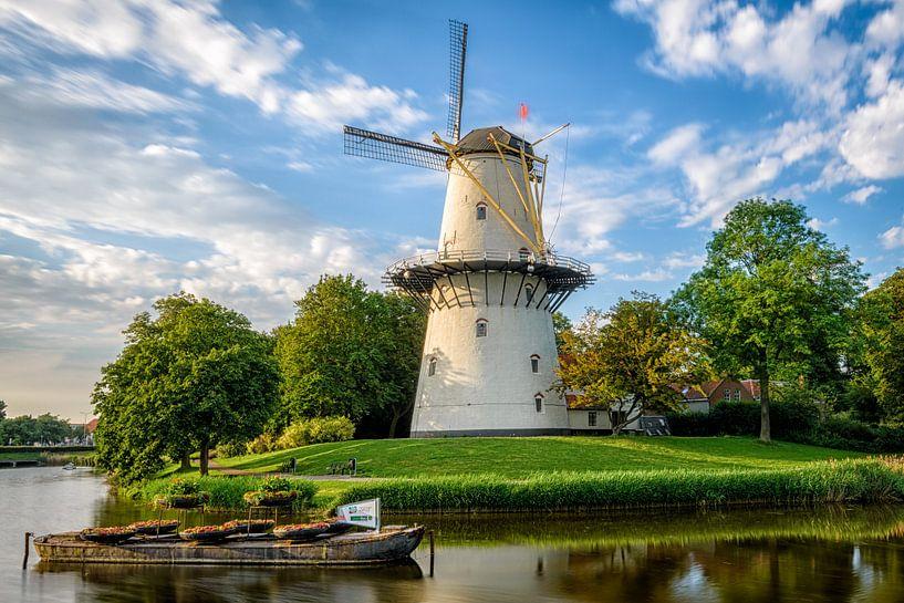 Molen De Hoop in Middelburg van Johan Vanbockryck