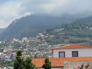 Madeira sur
