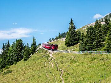Schafbergbahn in het Salzkammergut Oostenrijk van Animaflora PicsStock