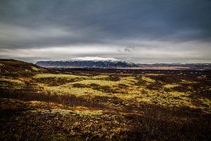ijsland  - landschap van