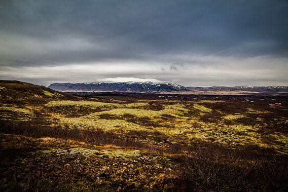 ijsland  - landschap