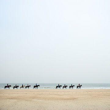 Paarden aan de kust van Paula Anglès