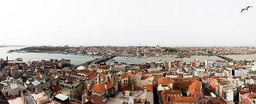 Panorama foto van Topkapi, het oude gedeelte van Istanbul. van Eyesmile Photography