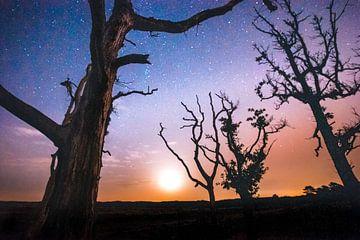 Atmosphärischer sternenklarer Himmel mit Vollmond von Fotografiecor .nl