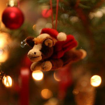 Weihnachtspony von Christine aka stine1