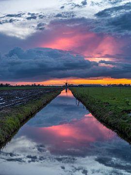 Spiegelbeeld van Tomek Kepa