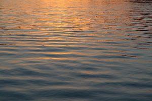 Licht opkomende zon in Kinderdijk